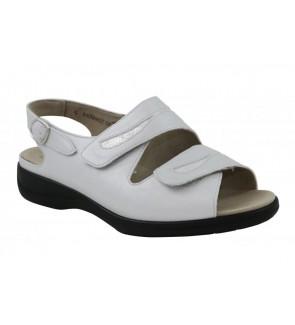Solidus kermit dorado sandaal
