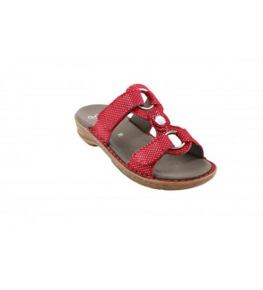Ara puntikid rot slipper  -...